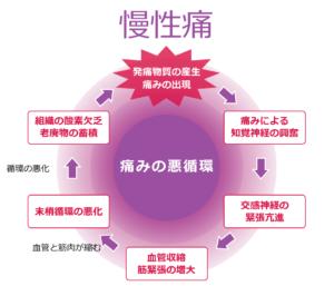 慢性痛の痛みの悪循環図